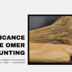 The Significance of the Omer Counting